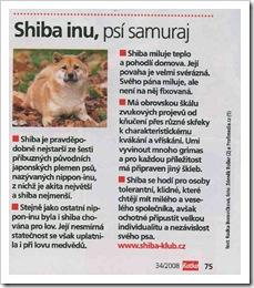katka-shiba