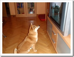 Yumi-2009-03-01